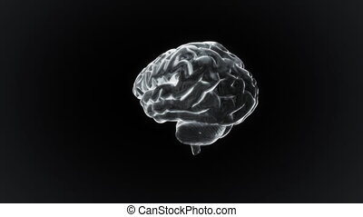 blanc, cerveau, tourner