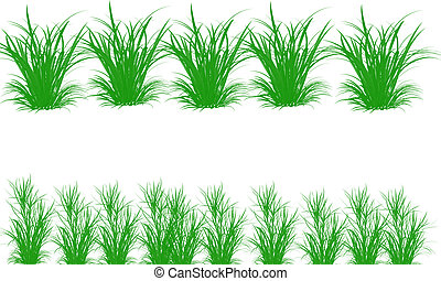 blanc, herbe, ensemble, fond