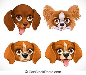 blanc, isolé, mignon, chien, teckel, museau, beagle, papillon, fond, papillon, race
