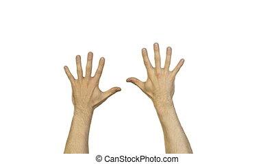 blanc mâle, doigts, fond, mains