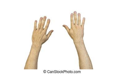 blanc mâle, fond, mains