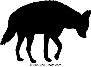 blanc, silhouette, fond, hyène