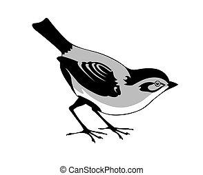 blanc, vecteur, silhouette, oiseau, fond