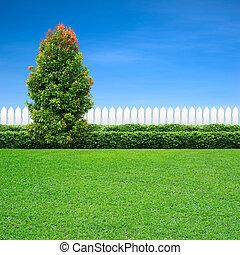 blanc vert, arbre, barrière