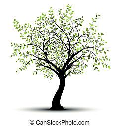 blanc vert, vecteur, arbre, fond