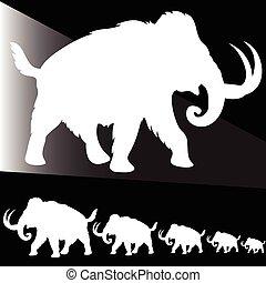 blanc, vieux, illustration, éléphant