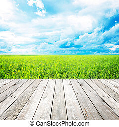 bleu, bois, champ ciel, fond, herbe, jetée