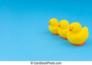 bleu, canard caoutchouc, jaune, arrière-plan.