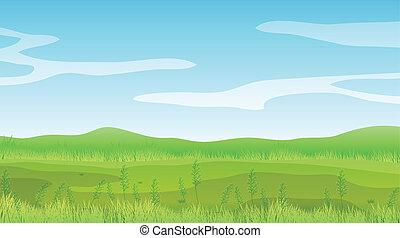 bleu, ciel clair, champ, sous, vide