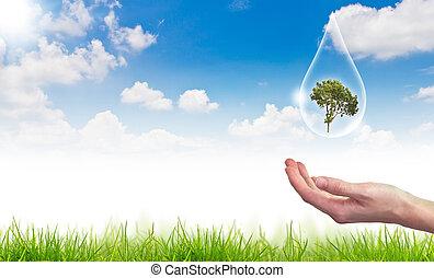 bleu, concept, eco, soleil, goutte, arbre, contre, eau, :, ciel