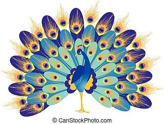 bleu, dessin, fabuleux, paon