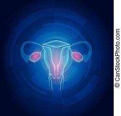 bleu, femme, résumé, fond, utérus, technologie