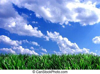 bleu, frais, ciel, vert, gras