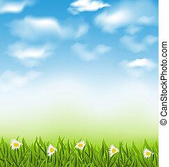 bleu, herbe, naturel, ciel, printemps, nuages, champ, fond, fleurs, chamomiles