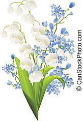 bleu, lis, fleurs, isolé, blanc, vallée
