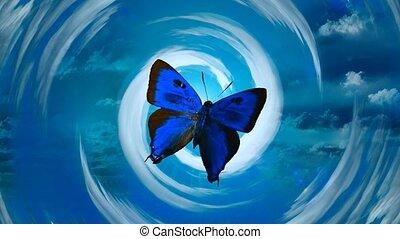 bleu, nuages, papillon