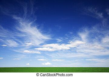 bleu, nuages, printemps, champ vert, blanc, cieux