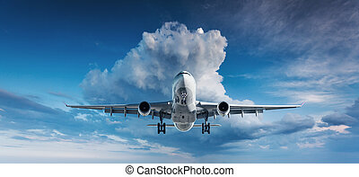 bleu, passager, voler, sk, blanc, avion, paysage