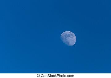 bleu, photo, ciel, lune
