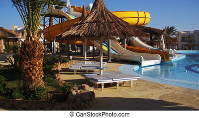 bleu, piscine, egypte, hôtel, ensoleillé, arbres, recours, paume, sunbeds