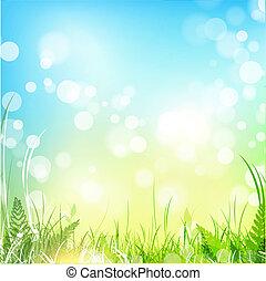 bleu, printemps, ciel, pré