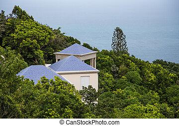 bleu, toits, vert, tropiques