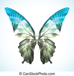 bleu, vibrant, vecteur, papillon, isolated.