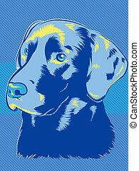 bleus, chien