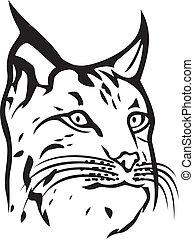 (bobcat, tête, head), lynx