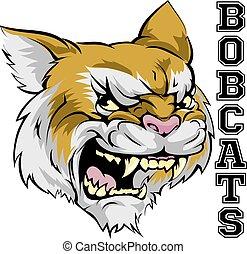 bobcats, mascotte
