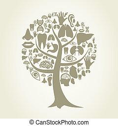 body2, partie, arbre