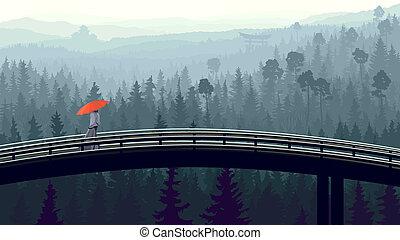 bois, bridge., brouillard, matin
