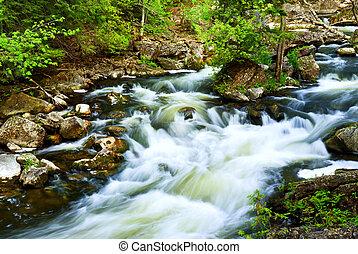 bois, par, rivière