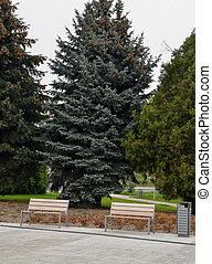 bois, parc ville, public, banc