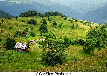 bois, vallée montagne, maison