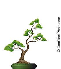 bonsai, vecteur, arbre