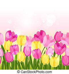 border., printemps, seamless, tulipes, modèle, horizontal, fleurs