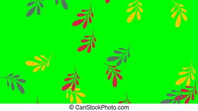 botanique, modèle, video., vert, 4k, animation., métrage, fleurs, griffonnage, feuilles, décoratif, stockage, résumé, pluie, design., effects., fond, fond, couverture