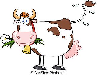 bouche, fleur, vache laitière