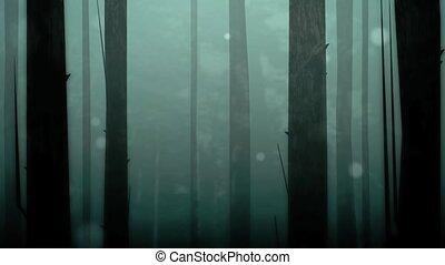 boucle, enchanté, forêt, hd
