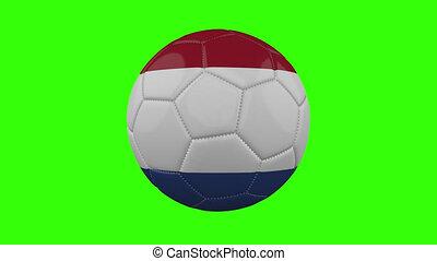 boucle, vert, alpha, transparent, tourne, pays-bas, balle, drapeau, fond