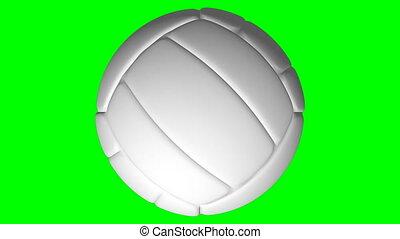 boucle, volley-ball, vert, écran