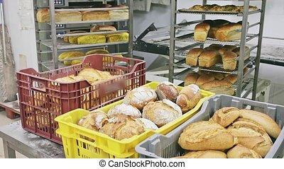 boulangerie, pain frais, étagère, appétissant