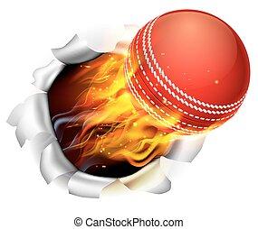 boule cricket, flamboyant, fond, trou, déchirure