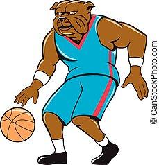 bouledogue, joueur, ruissellement basket-ball, dessin animé