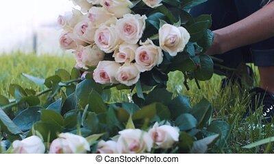 bouquet, rose, femme, marques, jardin