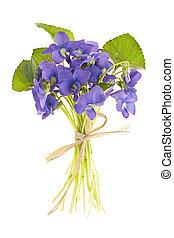 bouquet, violettes