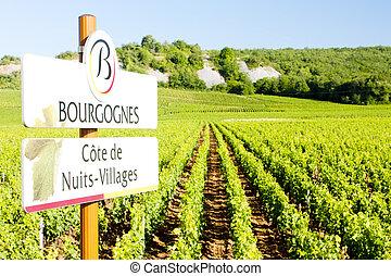 bourgogne, vignobles, france