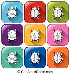 boutons, coloré, bogues, arrondi