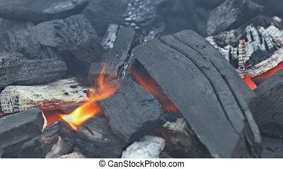brûlé, ardent, charbon de bois, brûler, braises rougeoyantes